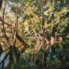 SATILDI – Emre Tandırlı – Göl Kıyısında
