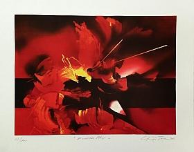 Güngör Taner – Endülüs Ateşi